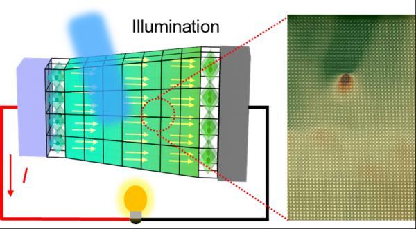 西安交大科研团队设计出一种基于挠曲电效应的光电探测器
